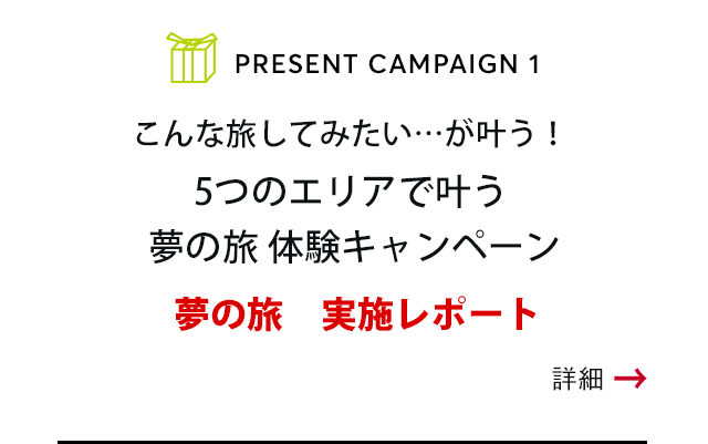PRESENT CAMPAIGN vol.1 こんな旅してみたい…が叶う!Make your dream Campaign 5つのエリアで叶う 夢の旅 体験キャンペーン